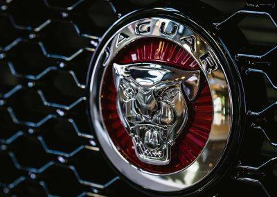 Close up logo on car grill Jaguar XF Australian Launch