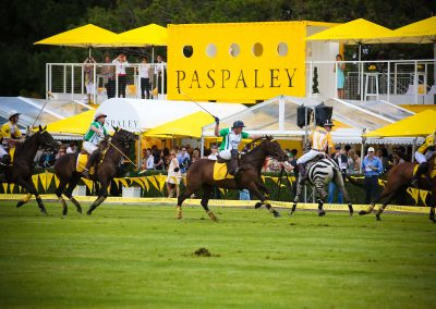 Paspaley Polo in the City Series Australiawide
